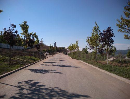 Cimitirul Mos Ion Roata – Someseni