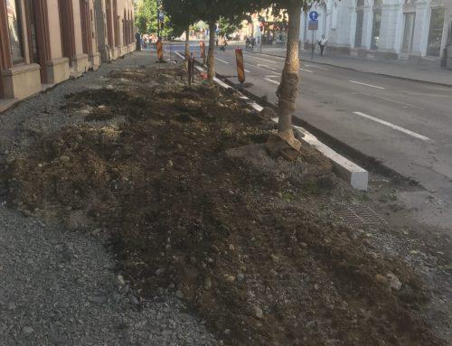 Piata Lucian Blaga – Cluj-Napoca