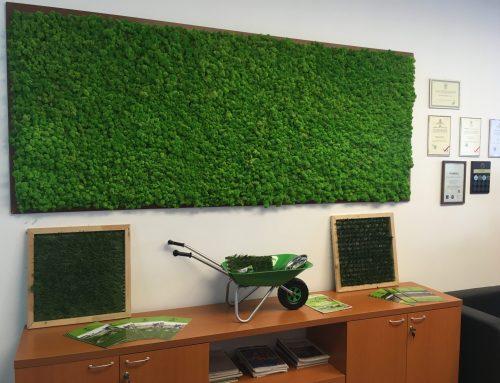 Birouri Eco Garden Construct